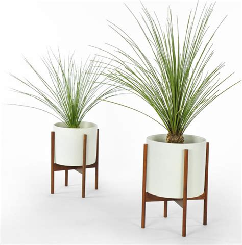 Indoor Modern Planters by Beautify Your Home With Modern Indoor Pots And Planters