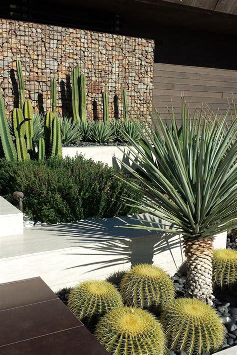 outdoor cactus garden ideas     landscape