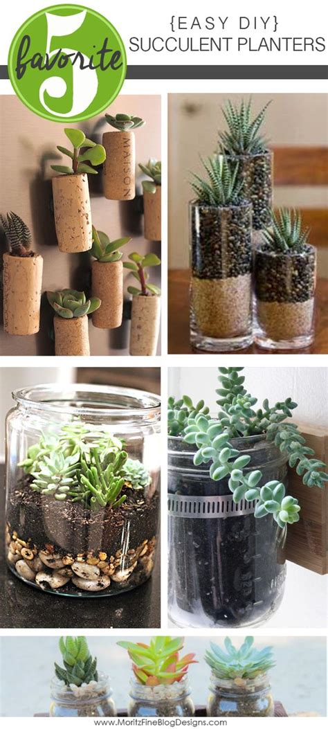 Easy Diy Succulent Planters Creative Planters And Corks Succulent Planter Ideas