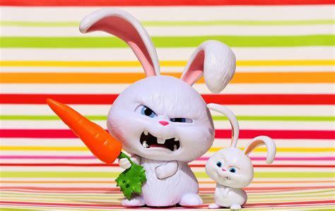 Ikea Vandring Hare Boneka Kelinci 무료 사진 토끼 악 눈 뭉치 영화 캐릭터 애완 동물 재미 귀여운 pixabay의 무료 이미지 1631435