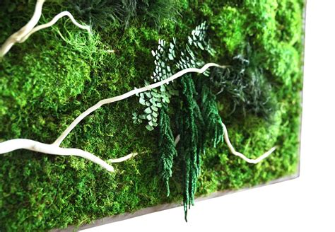 Art On Walls Home Decorating naturally beautiful projects made with real moss