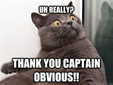 Captain Obvious Meme - thank you captain obvious meme memes