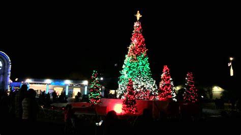 christmas tree farms san antonio tree real trees in san antonio fresh downtown is aglow with lights