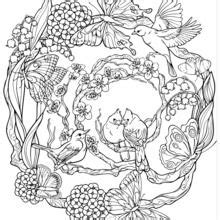 secret garden coloring book india dibujos para colorear mandalas es hellokids