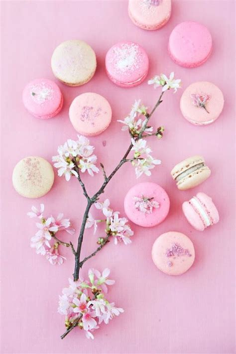 lovely like blossom cute gt 94 best images about tea cherry blossoms on pinterest