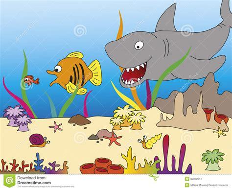 cadena alimenticia krill cadena alimentaria stock de ilustraci 243 n imagen de presa