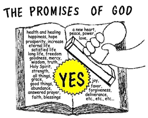 inheritance clinging to god s promises in the midst of tragedy books reborn in standing on god s promises