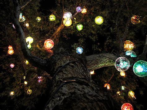 Trav Lin Lights Dreams Fairies Lights Gardens Trees Cool Tree Lights