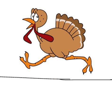 turkey gifs find on giphy