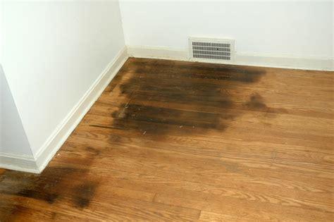 how to remove urine from hardwood floors northside floors