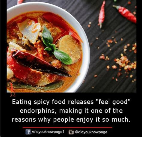 Would You Eat This Spicy Dish by Feels Memes Of 2017 On Sizzle Runs Away