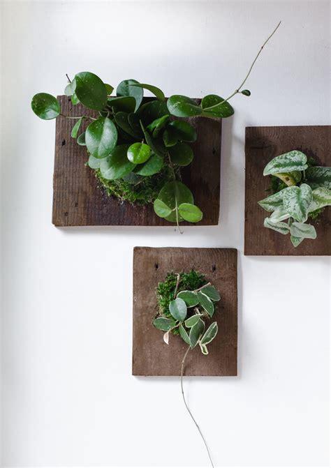 Beautiful Dining Room Tables Diy Wall Mounted Plants Aka Living Art A Beautiful Mess