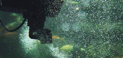Skimmer Aj 400 Putih pl 225 vaj 250 ci skimmer oase swimskim cws numa sk