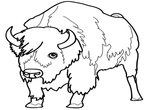 coloring pages of grassland animals grassland animals coloring pages coloring home