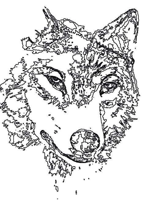 hard wolf coloring pages animal coloring pages wolf coloring pages for adults