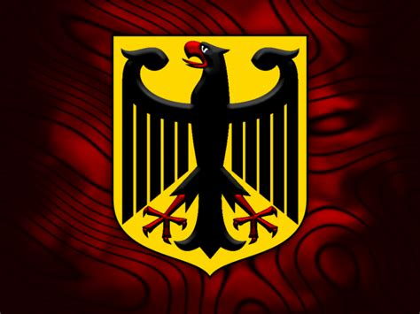 german eagle hd wallpaper wide screen wallpaper