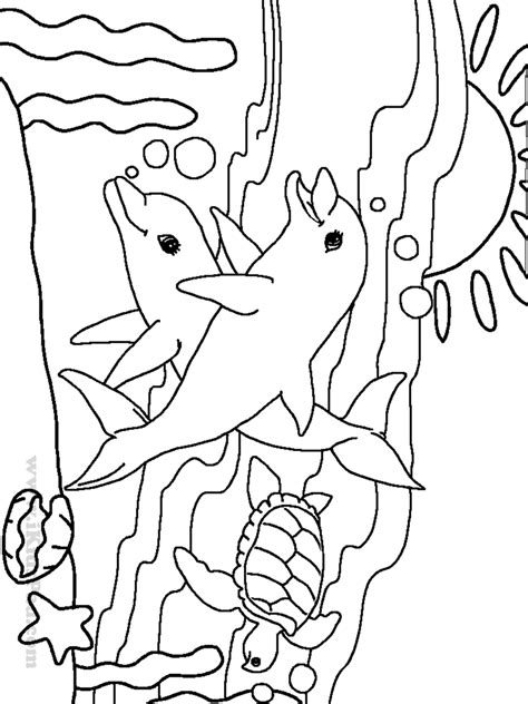 ocean coloring pages preschool very cute sea animals coloring pages for preschool and pre