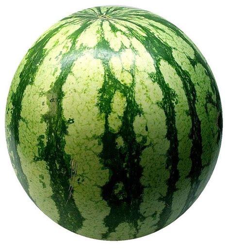 watermelon melon fruit  photo  pixabay