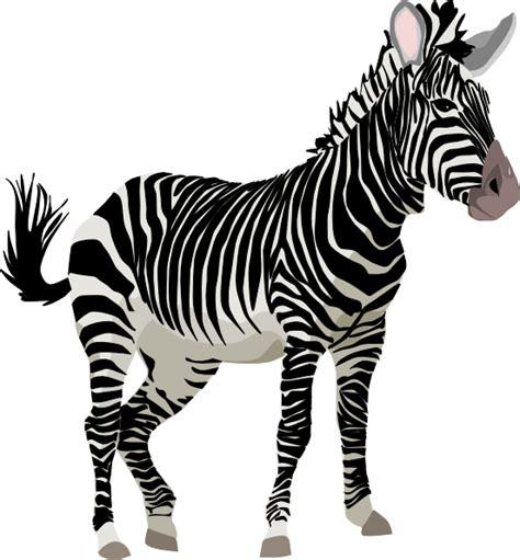 Zebra Free Search Free To Use Domain Zebra Clip