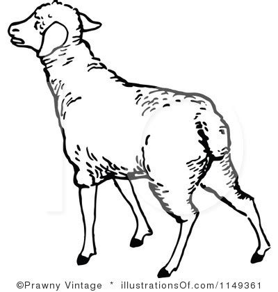 Lamb Black And White Clipart - Clipart Suggest Lamb Black And White Clipart