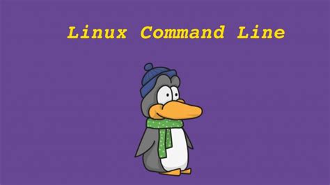linux tutorial udemy linux command line basics udemy