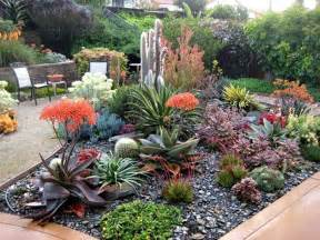 beautiful succulent garden extraordinary landscapes in san luis obispo county succulent