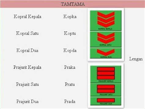 Buku Panduan Seleksi Masuk Tentara Tni tni atau polri urutan pangkat tni dan polri