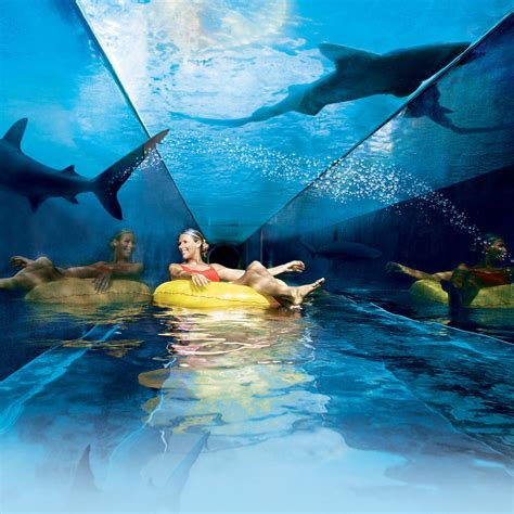 Casual Dining Rooms by Water Slides Dolphin Cay Bahamas Atlantis Paradise Island