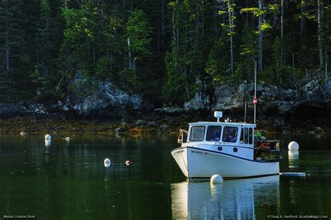 boat tours from southwest harbor maine maine lobster boat in seal cove