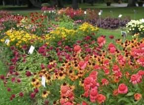 ramble echinacea and the bees uri botanical gardens blog