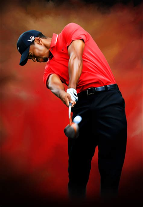 tiger woods swing portrait tiger woods golf swing portrait poster photo canvas art