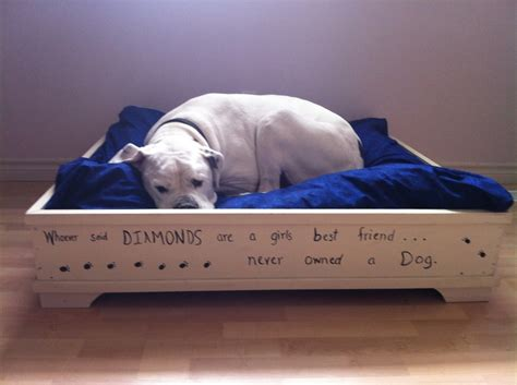 dog bed diy diy dog bed doggie stuff pinterest