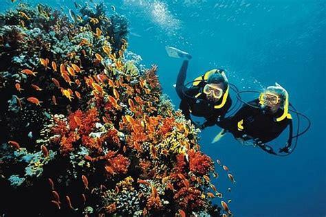 le plongee ucpa institut de formation aux m 233 tiers du sport et de l animation plongee