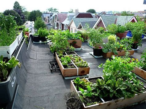 255 best images about rooftop gardens and gardening on