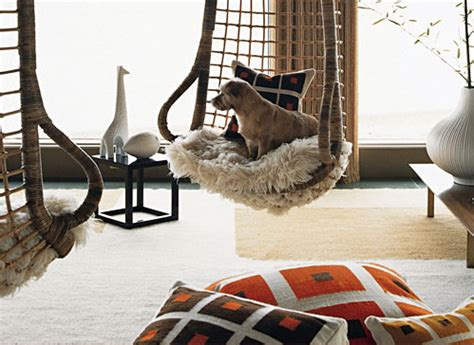 pretty inspirational tips  pet friendly interiors