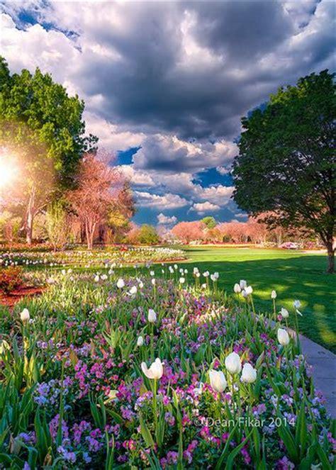 Dallas Arboretum And Botanical Garden Dallas Tx Tulips And Petunias Dallas Arboretum And Botanical Garden Colorful Pinterest