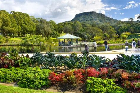 top 10 must to visit tourist attractions in wollongong