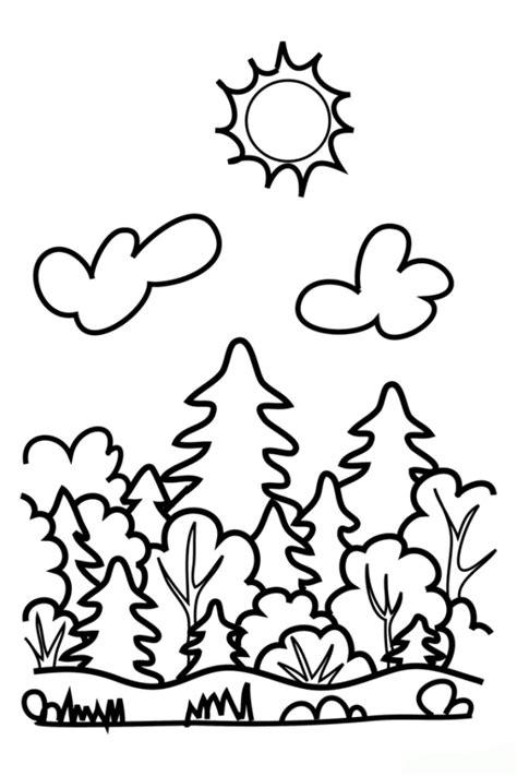 Rainforest Colouring Page Ausmalbilder Zum Drucken Malvorlage Wald Kostenlos 2