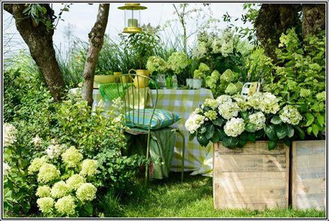 Garten Gestalten Hortensien by Hortensien Im Garten Pflanzen Garten House Und Dekor