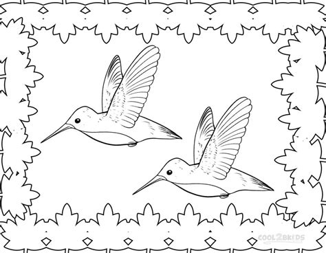 printable coloring pages hummingbirds hummingbird coloring pages