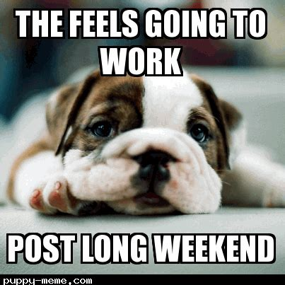 Long Weekend Meme - post long weekend feels
