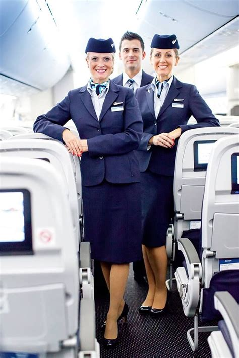 how to be a cabin crew member 17 best ideas about tui on carbon