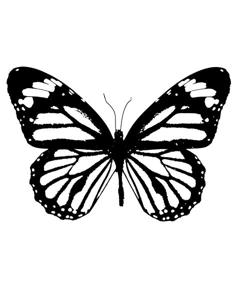 printable stencils of butterflies download your free butterfly stencil here save time and