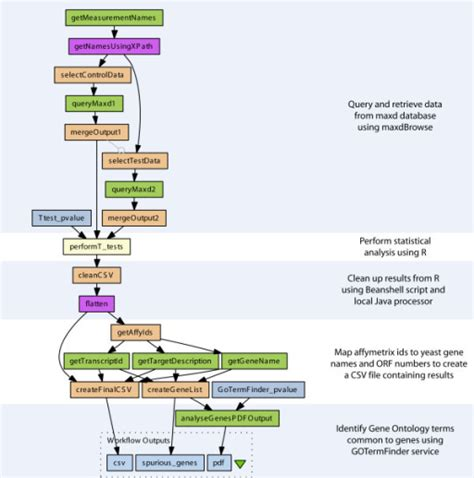 microarray workflow a diagram of the microarray data analysis workflow dat