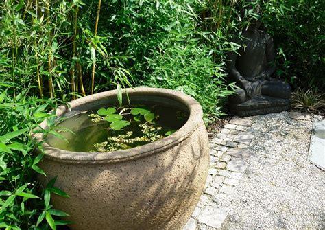 Bambusarten F R K Bel 1591 by Gartengestaltung Mit Bambus Gartengestaltung Mit Bambus