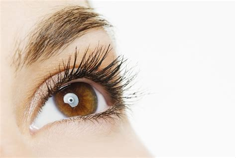 printable brown eyes 11 important habits that keep your eyes healthy real simple