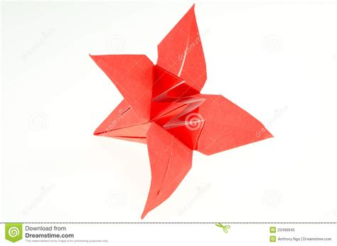origami paper folding stock image image of animal