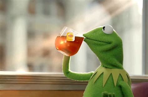 Kermit Meme - 5 things kermit the frog can teach us about life