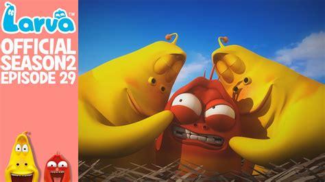 download film larva cartoon full episode gratis official nightmare larva season 2 episode 29 youtube
