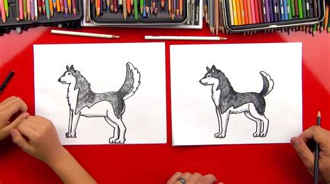 how to a husky how to draw a realistic husky for hub